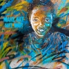 C215  Vitry