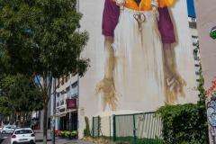 Sur les murs de Lyon