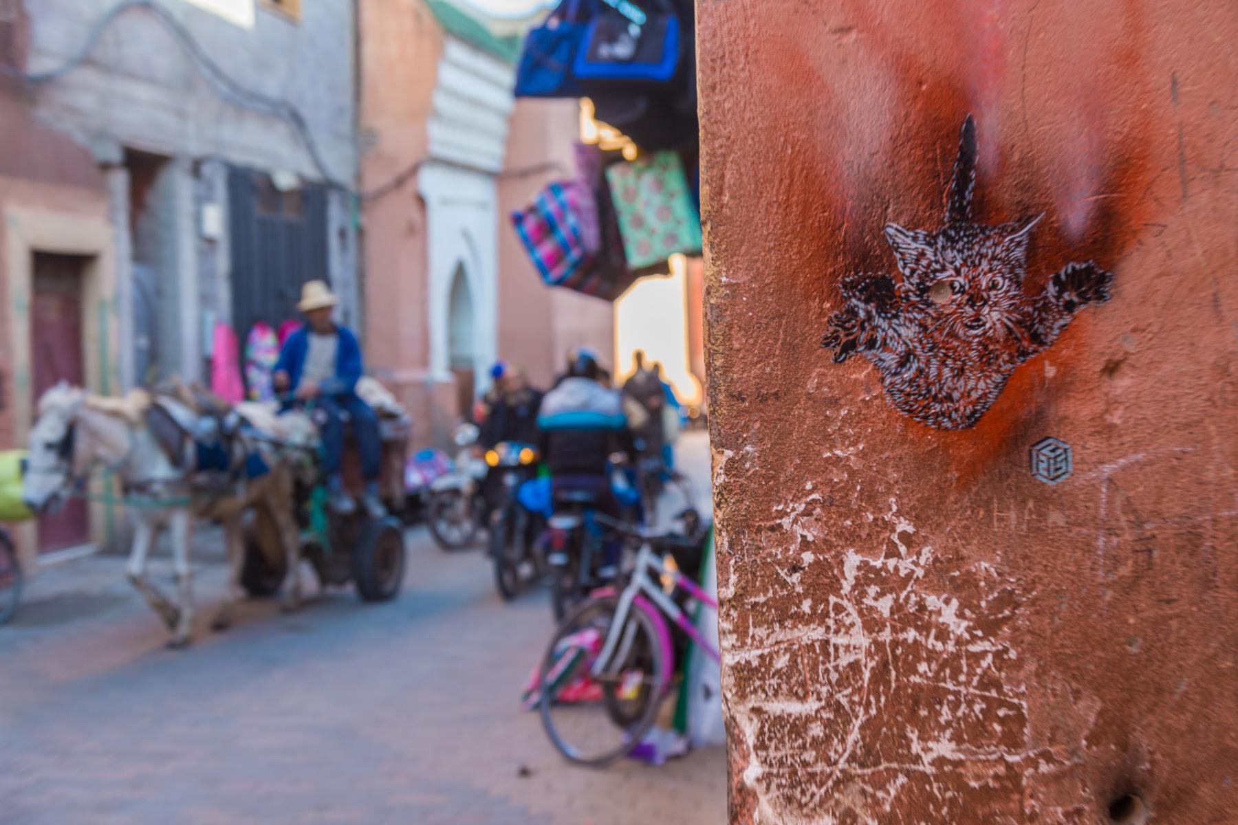 Marrakech - Novembre 2019