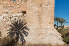 Séjour à Djerba - Février 2020