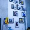 Expo de C215 à la galerie Itinérrance - Paris